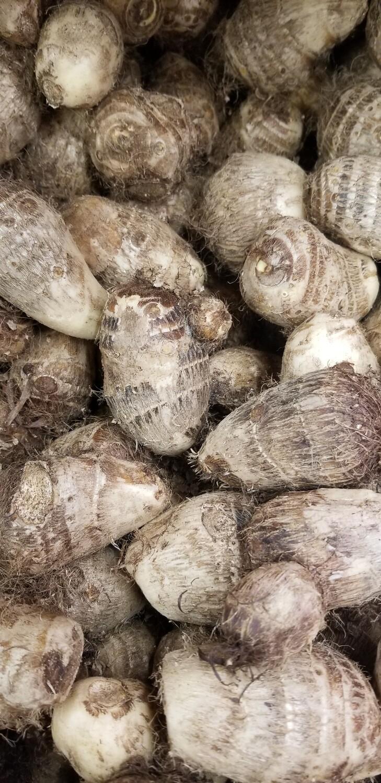 Taro Root 1lb