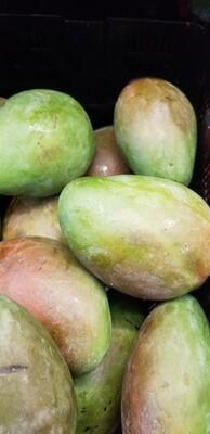 Green Mango Each
