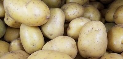 Yukon Gold Potato 1lb