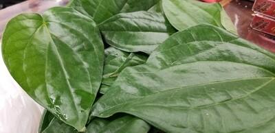Paan leaves (Bag of 5)