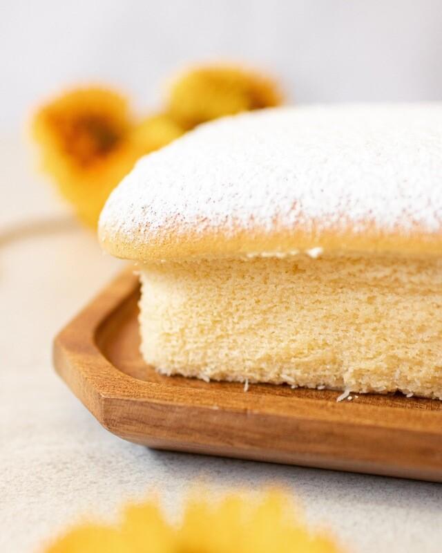 Coconut Japanese Cheesecake
