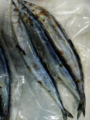 Sanma Fish