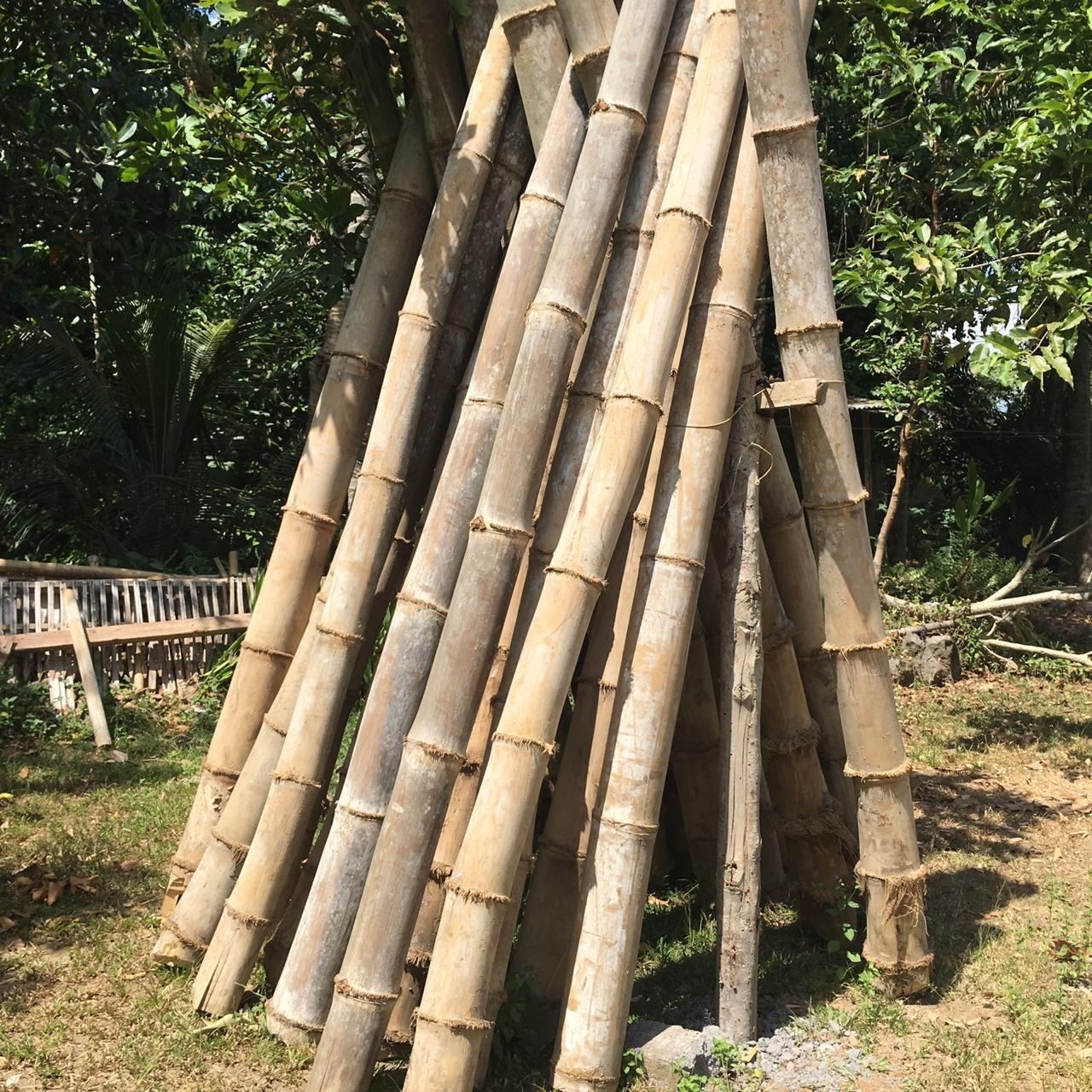 Handmade Organic Bamboo Cutlery Set