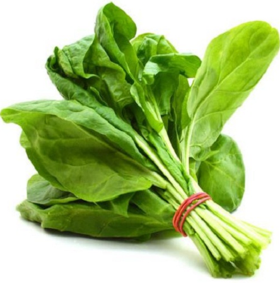 Spinach In a Bunch