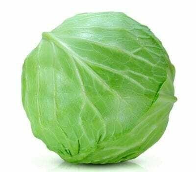 Green Cabbage Head