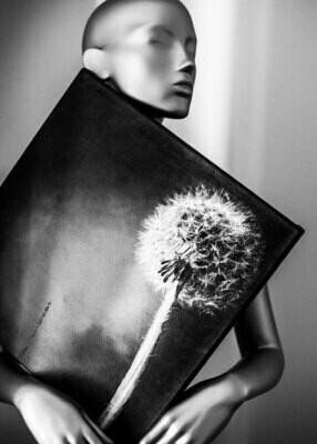 THE LITTLE BLACK DRESS, Suzanne von Borsody & Mirko Joerg Kellner