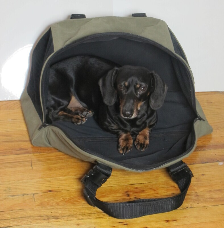 TotePet™ Fold-Able Carrier