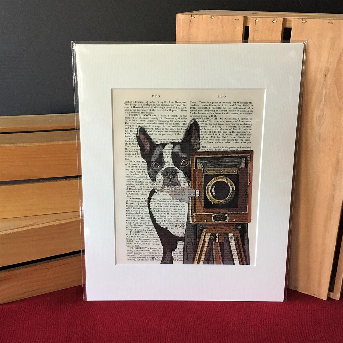 Fab Boston Terrier Print