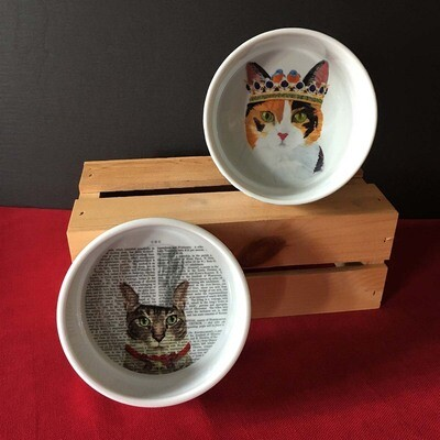 Cat Water & Feed Bowls