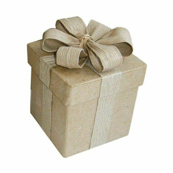 SQUISI BOX SPECIAL