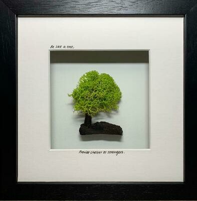 """""""Be like a tree, provide shelter to strangers"""""""