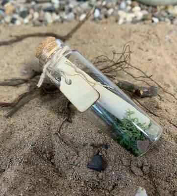Message in a bottle - 7cm