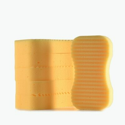 Ridgeback Sponges x 6