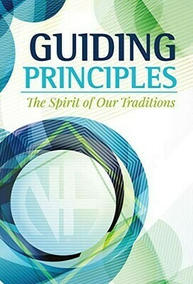 NA Guiding Principles Approval Draft Kindle Edition Ebook