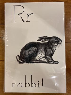 Rabbit flashcard