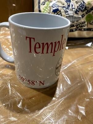 AGFJ Temple Univ Mug