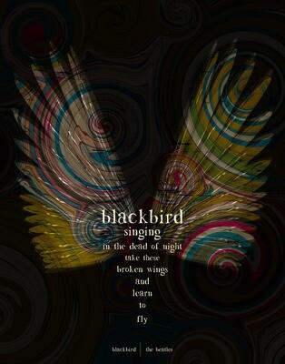 The Beatles - Blackbird - 8x10