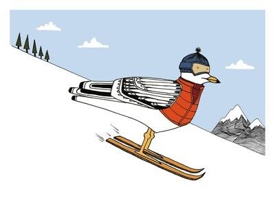 Ski Gull Print - 8x10