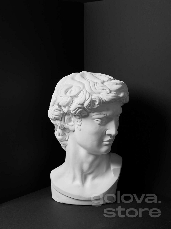 Гипсовая голова (бюст) Давид