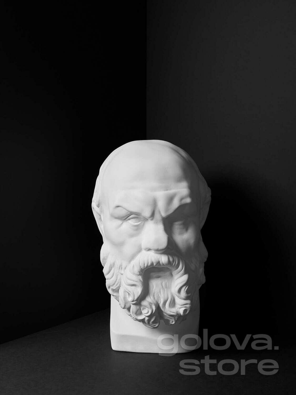 Гипсовая Голова (бюст) Сократ (для МАРХИ)