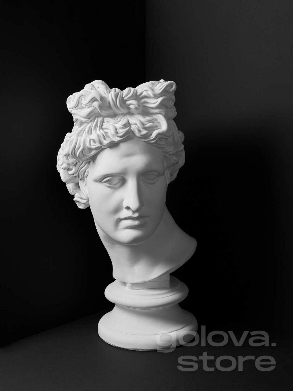 Гипсовая голова (бюст) Аполлона