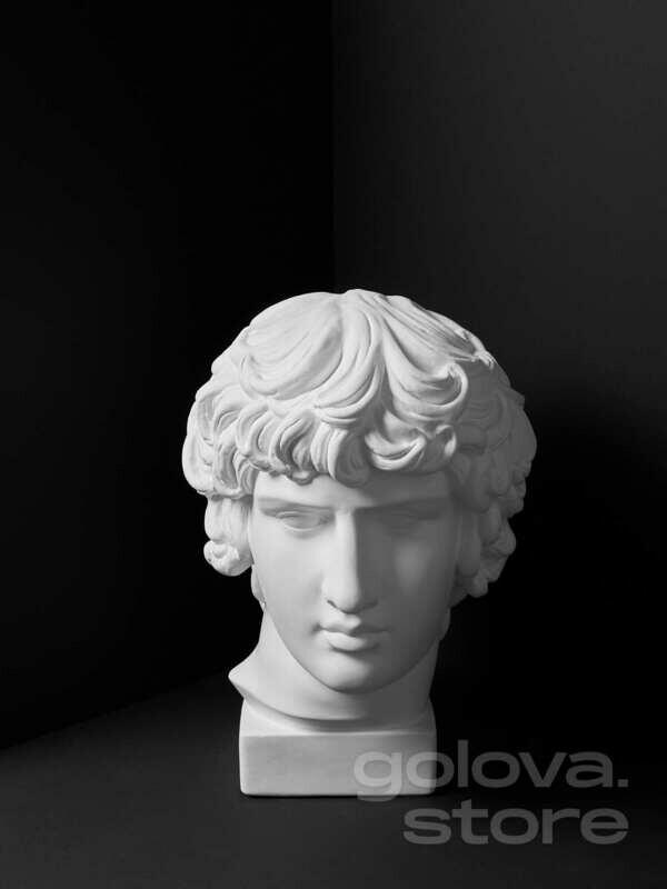 Гипсовая голова (бюст) Антиной (упрощенный, МАРХИ)