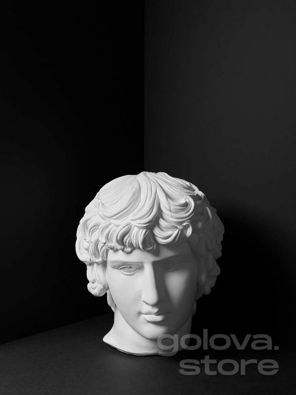 Гипсовая голова (бюст) Антиной