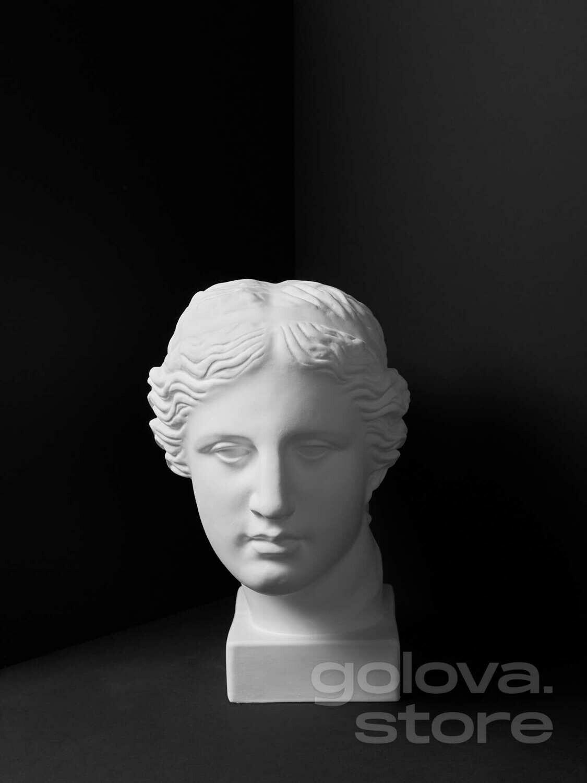 Гипсовая голова (бюст) Венера Милосская на прямоугольном основании