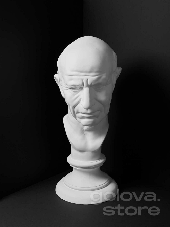 Гипсовая голова (бюст) Римлянин