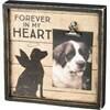 Box Frame; Dog, Forever in My Heart