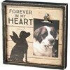 Box Frame; Dog, Forever in My Heart