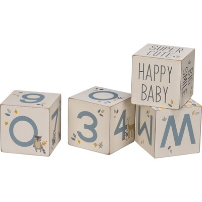Milestone Blocks; Baby