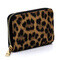 Card Holder; leopard