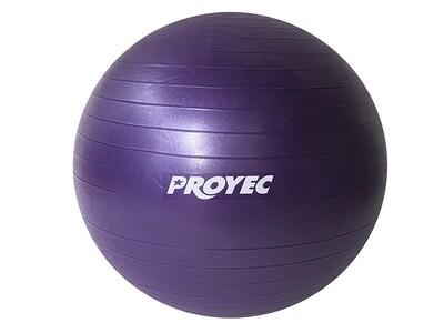 Balón Fisiológico 85 Cm Esferodinamia Fit Ball + inflador