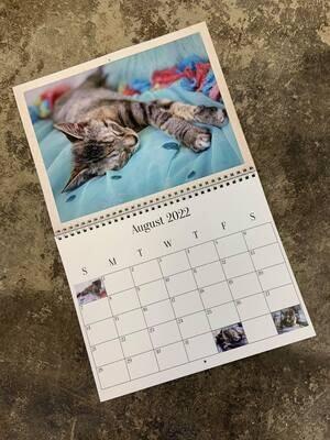 2022 Cattyshack Calendar