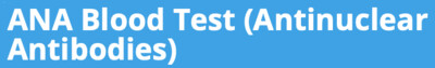 ANA Blood Test (Antinuclear Antibodies)