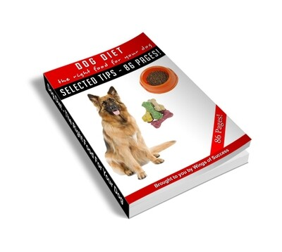 Dog Diet-The Right Food For Your Dog
