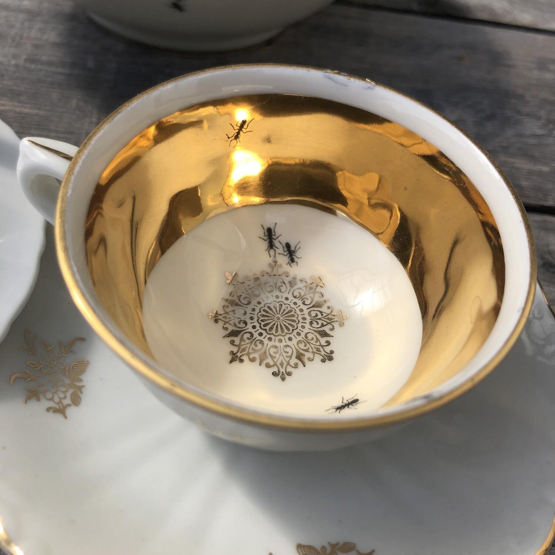 Mokka-/Espresso Tasse >Ameisen< 2 tlg. (Tasse und Untertasse)