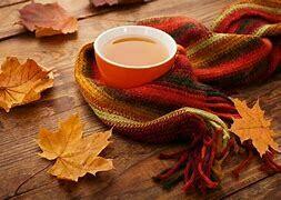 Maple Cream Whole Plant Hemp Tea  15 Servings Pouch / 10 mg per serving