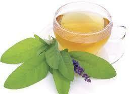 Ginkgo Sage THC FREE Organic Hemp Tea  15 Servings Pouches / 5 mg per serving