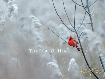 06/Beatitudes, The Pure of Heart (Matthew 5:8)