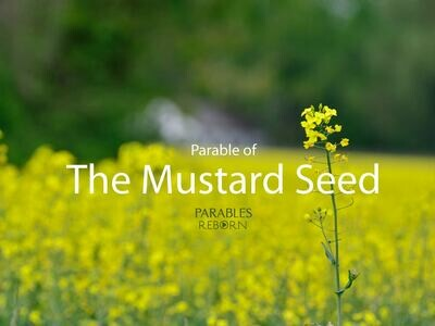09 Parables Reborn, The Mustard Seed