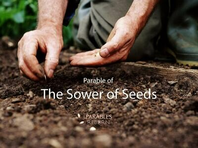 11 Parables Reborn, The Sower of Seeds