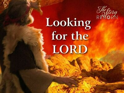 The Story - Looking For The Lord