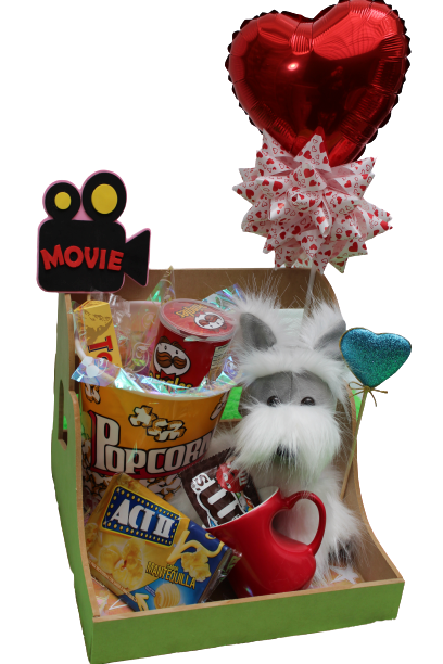Movie time con tu peluche favorito