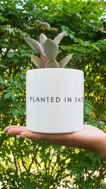 Ceramic Planted in Faith (Various Sizes) — White
