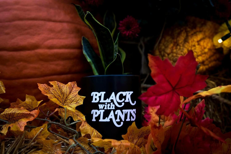 "Ceramic Black With Plants —  4"""