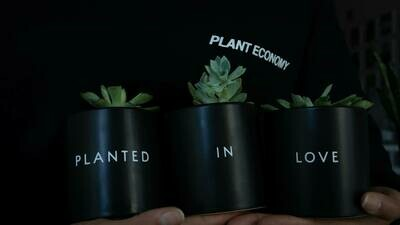 Planted in Love Plant Set — 3.5