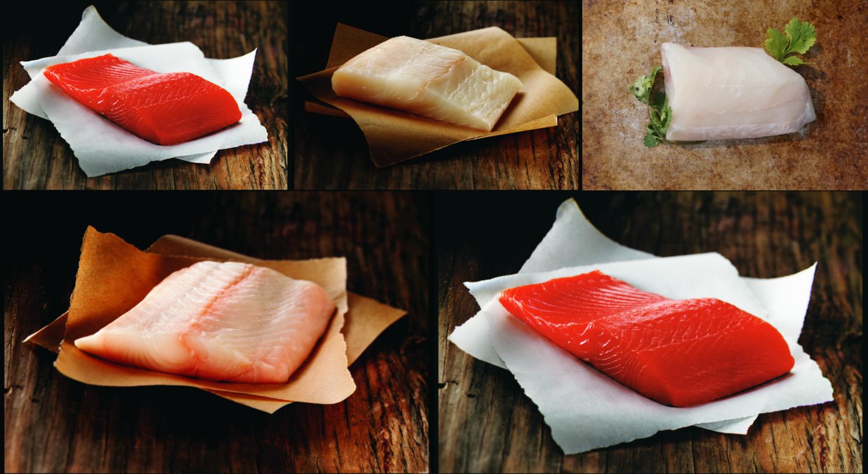 Southeast Alaska Premium Finfish Tour