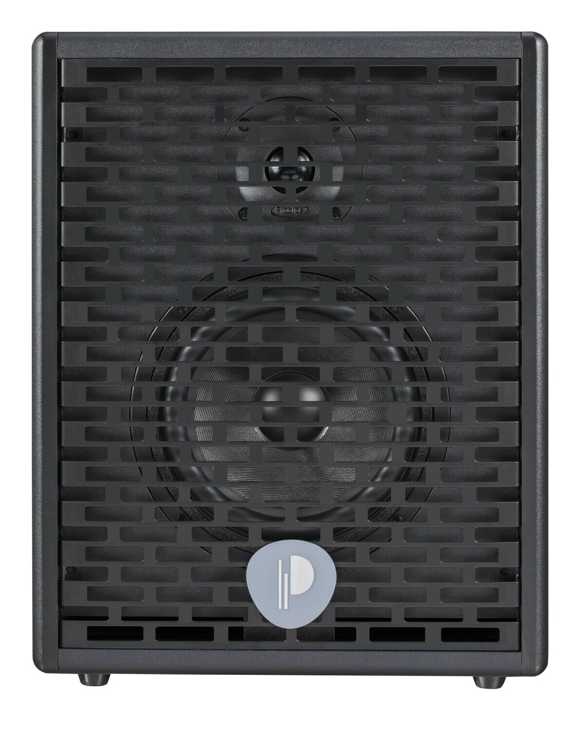 Prodipe Natural 6 Acoustic Amp 140w